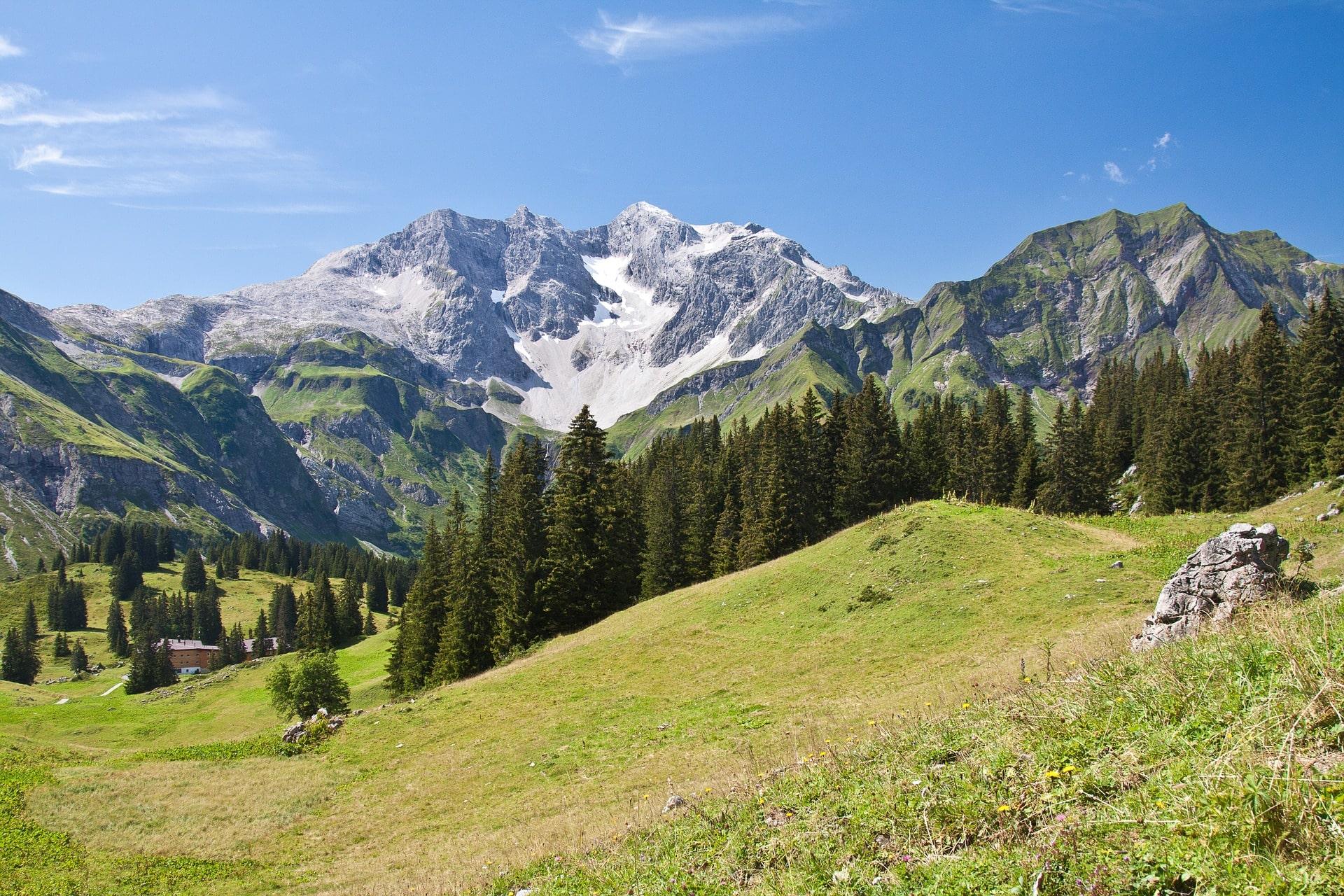 Hochzeitssängerin Vorarlberg